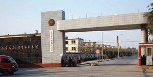 马三家劳教所的警察,将18位女法轮功学员扒光衣服投入男牢房